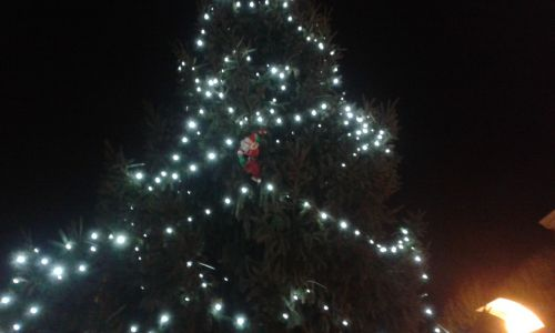 Kerstman in de kerstboom