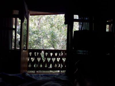 Manakin Lodge grenst aan het bos
