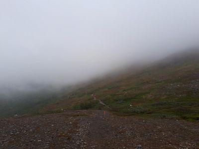 Spannend om te wandelen in de dichte mist