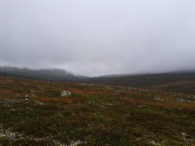 De mist trekt langzaam op