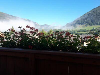 De echte Oostenrijkse bloemen aan het balkon