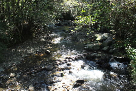 Black Valley Stream achter de camping