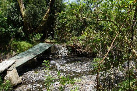 Ngari Nanyuki River