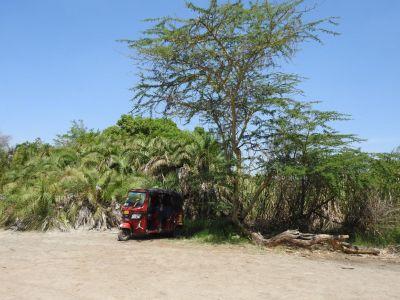 Tuktuks in Tanzania