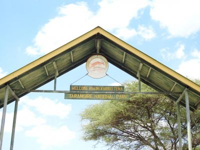 Karibu in Tarangire National Park