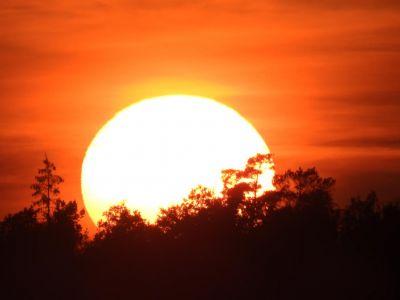 Prachtige zon