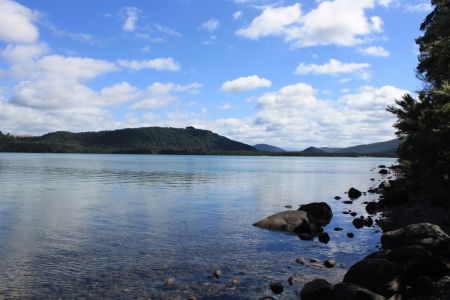 De Lakehead Track loopt  rondom Lake Rotoiti