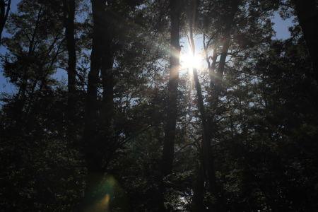 ...de zon liet zich ook zien
