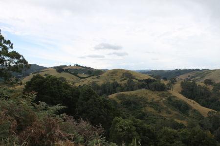 Heuvelachtig groen landschap