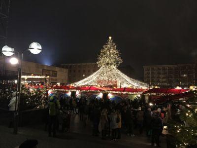 De 25 meter hoge kerstboom