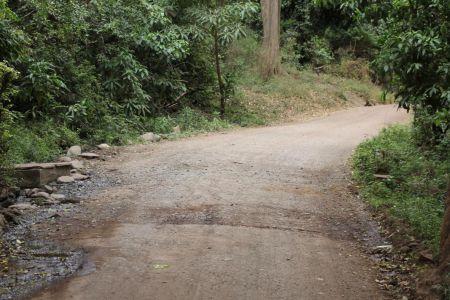 Route door de jungle