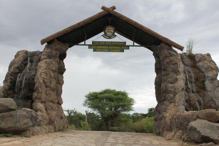 Karibu in Lake Manyara National Park