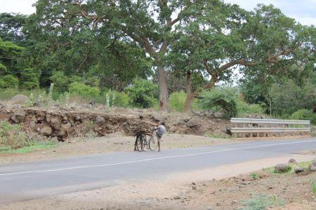 Kinderen uit het dorp hebben hout gehaald