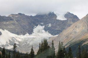 Icefield Glacier