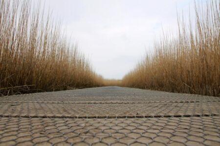 Volg het pad