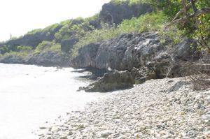 Strand vol koraal