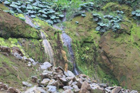 Met mos bedekte rotswanden
