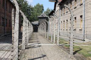 Dubbel prikkeldraad Auschwitz