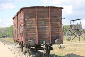 Wagon Birkenau