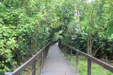 De laatste 2 km volg je deze boardwalk