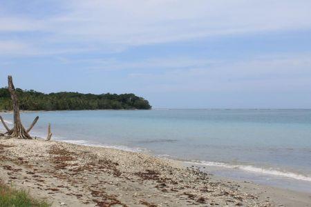 Rond deze punt zijn 35 soorten koraalriffen te vinden