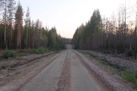 De bosbrand is nog goed zichtbaar