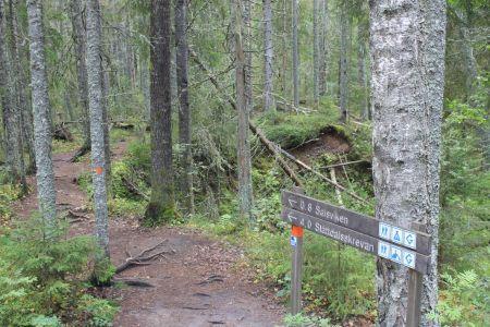Route naar Slåttdallskrevan