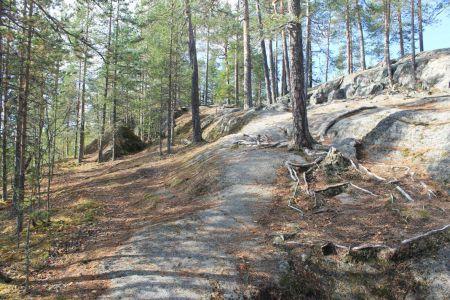 Het bos van Sukulanrakka