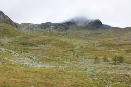 Op weg naar de Nieras top