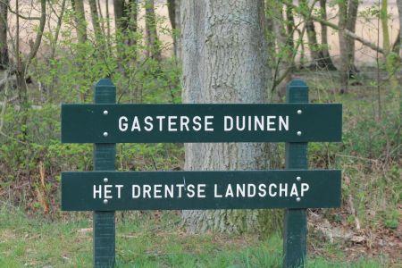 Gasterse Duinen