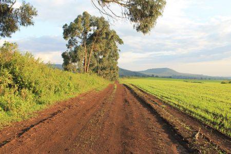 Wandelen over het land van de Simba Farm