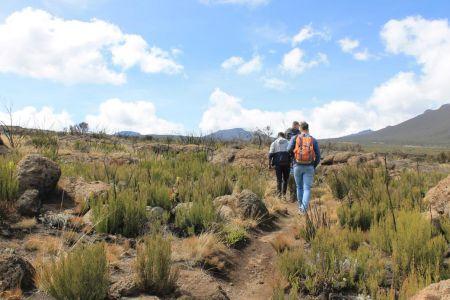 Wandelen op de geweldige Kilimanjaro