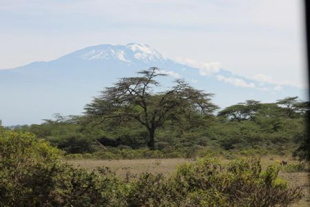 Mount Kilimajaro is ook hier nog te zien