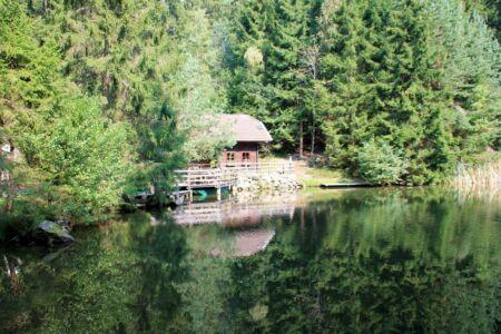 Een huisje in de natuur