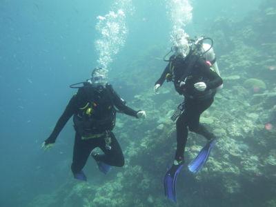 Wij onderwater