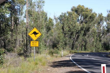Watch out Kangaroos