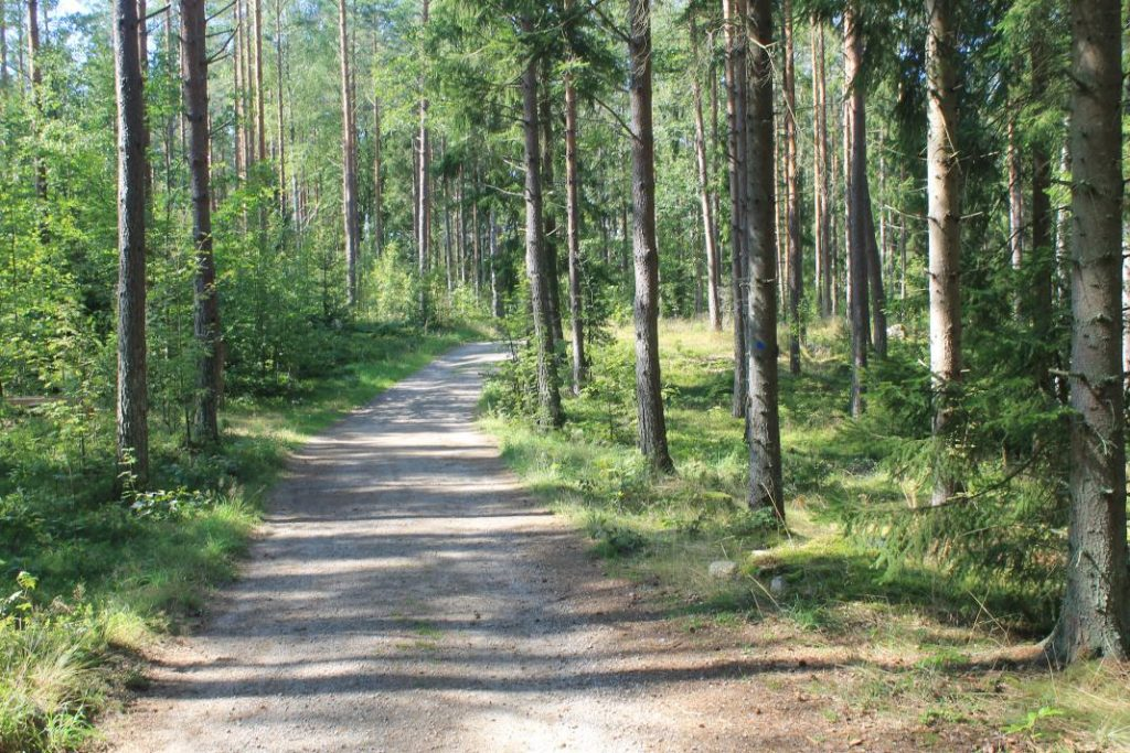 Het bos op Getnö Gård